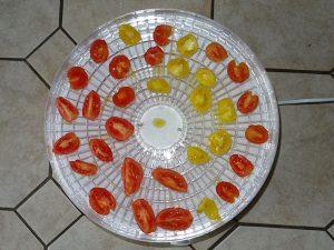 Tomaten im Dörrautomaten